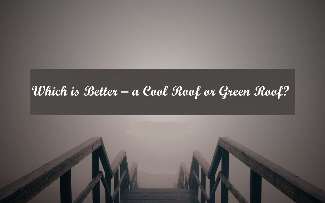 Which is Better – a Cool Roof or Green Roof?