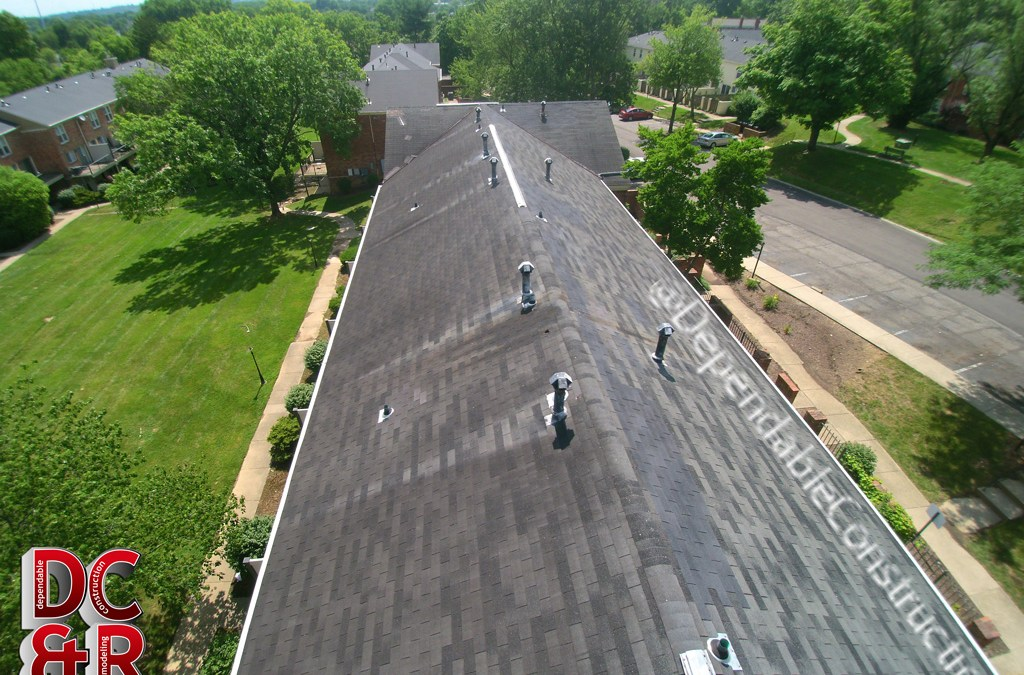 Roof Drone #3