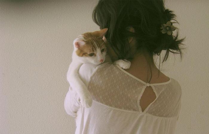 fotos-com-o-seu-gatinho