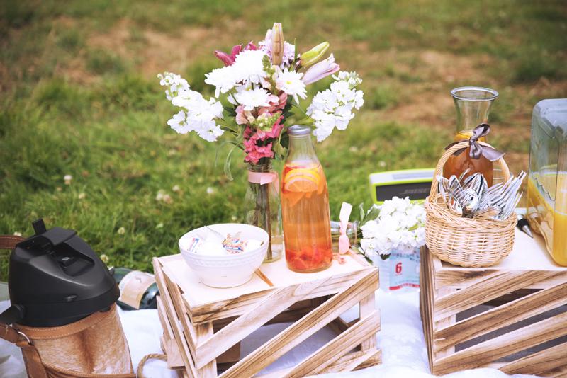 picnic-sf