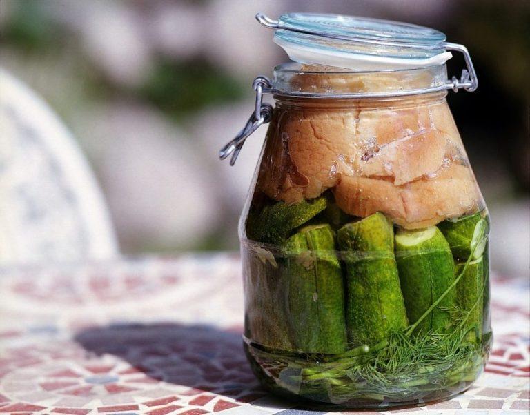 Pickles o vegetales fermentados