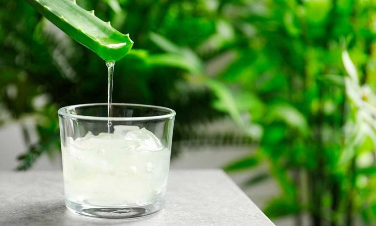 beneficios de beber Aloe Vera