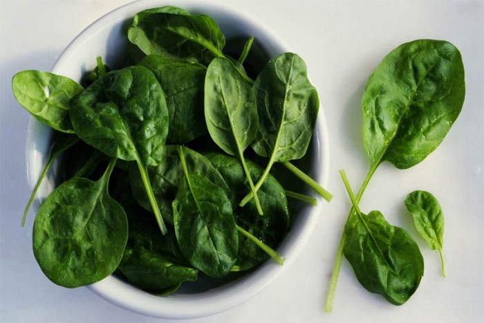 spinach-essential-food-for-healthy-hair