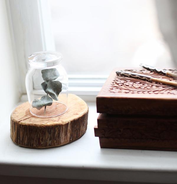 Eucalyptus-under-a-glass