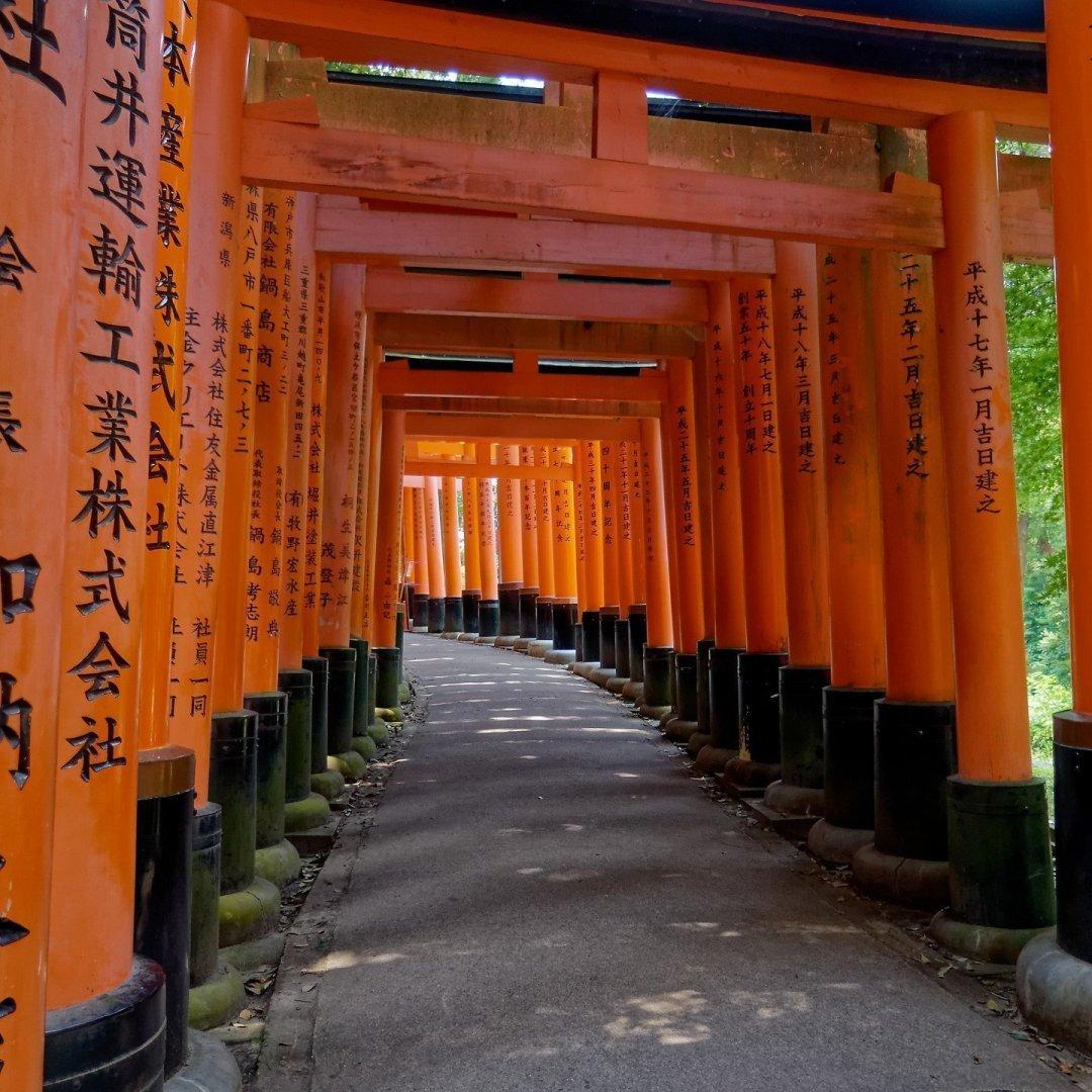 Mirando atrás en el camino al monte Inari