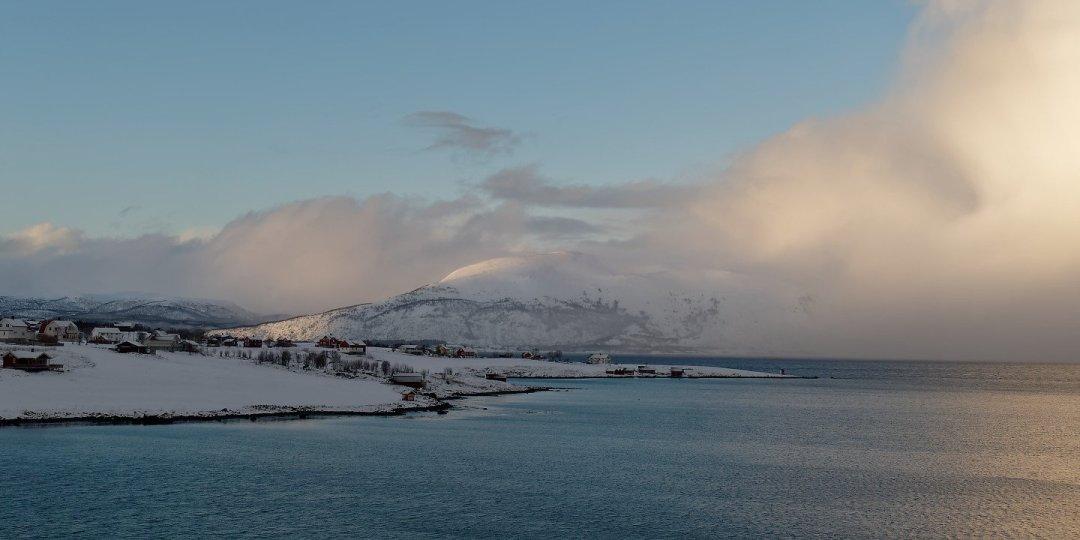 Holdøya