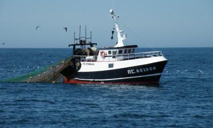 Communiqué Délégation socialiste française – Nouvelle Gauche sur la pêche électrique