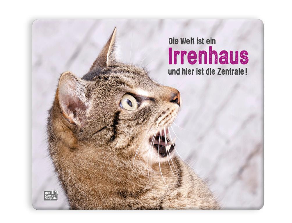Mauspad Mousepad witzige Katze Die Welt ist ein Irrenhaus