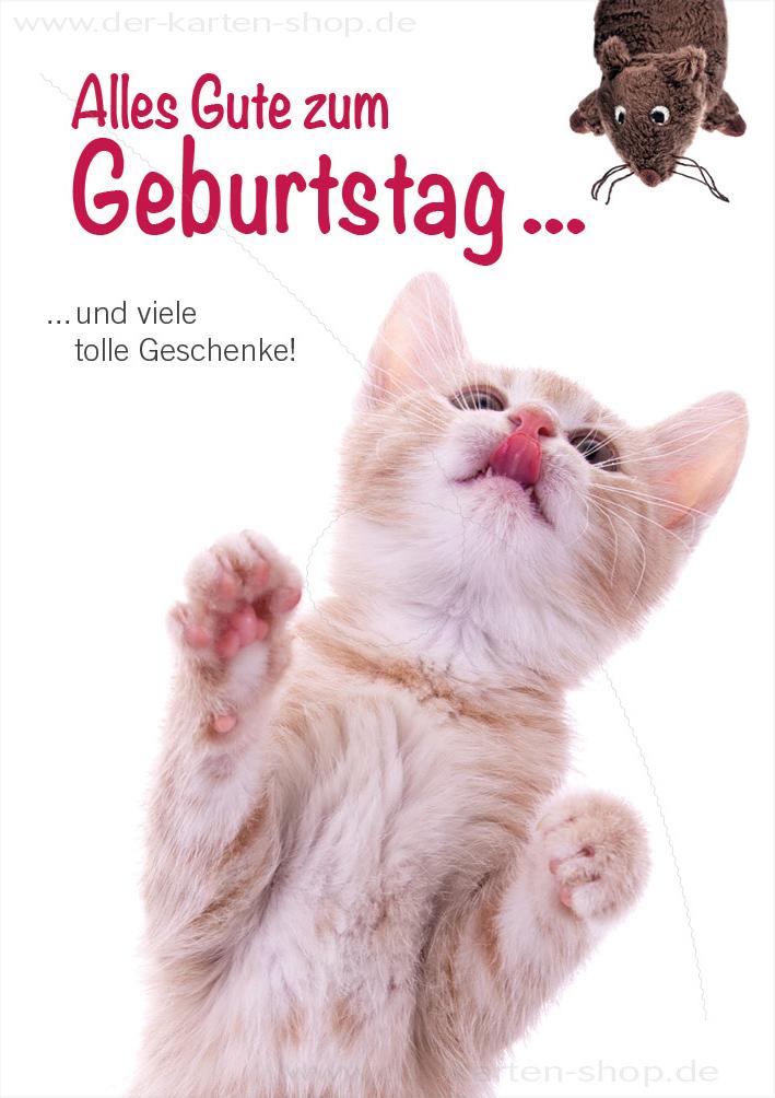 Doppelkarte Geburtstagskarte Glckwunschkarte Katze Alles