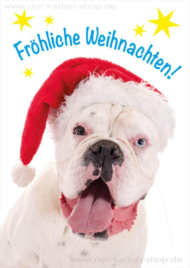 Postkarte Weihnachtskarte weier Hund Boxer Frhliche