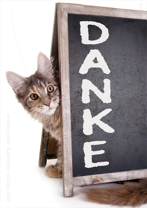 Postkarte Grukarte Dankeskarte se Katze mit Schild
