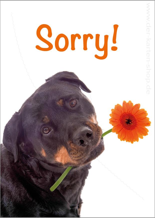 Postkarte Grukarte Entschuldigungskarte Hund mit Blume