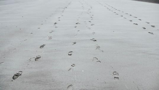 Und immer sind da Spuren im Sand ...