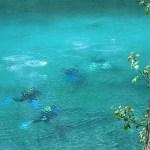 160329 Green Lake Taucher