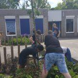 tuin werken (1)