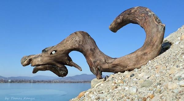 Tamas Kanya - скульптуры из коряг и обломков затопленных деревьев