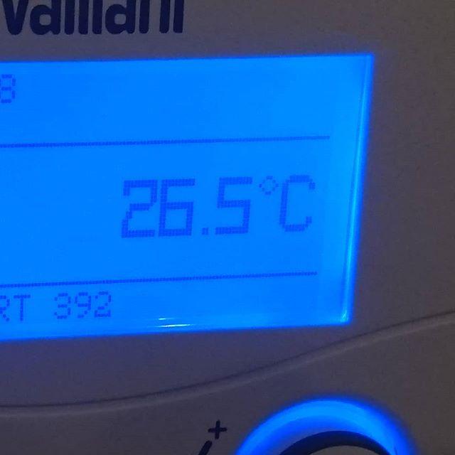 Es ist Kuschelig warm in unserem Wohnzimmer. Trotz offener Fenster wird es selbst abends nicht Kühler