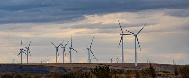Vindmøller gir liten energigevinst. I Tyskland er det flere titusen, men de står bare for 3,2% av energien.