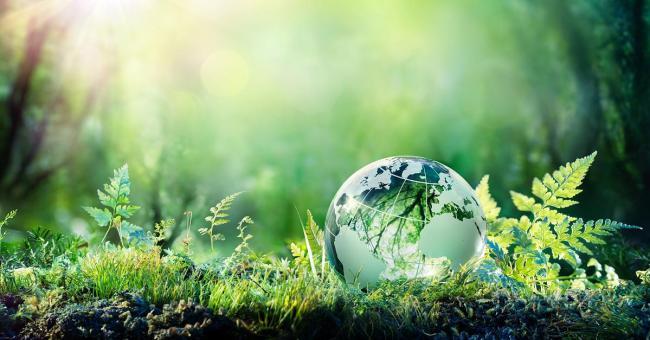 Jorda blir grønnere hovedsaklig på grunn av høyere CO2 i luften.
