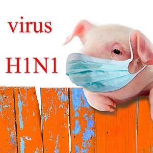 Generalprøven til Korona het Svineinfluensa. Den ble en helspolitisk skandale som ble fort neddysset.