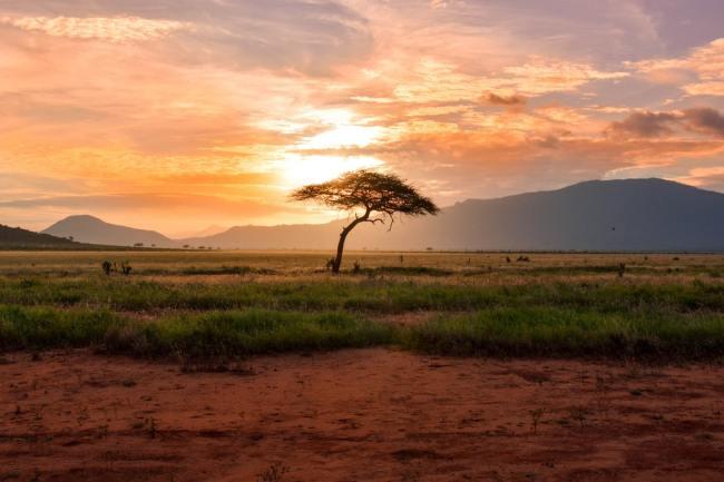 Afrika har stort underskudd på energi, en viktig grunn til deres fattigdom. Skal de forsyne Europa med energi?