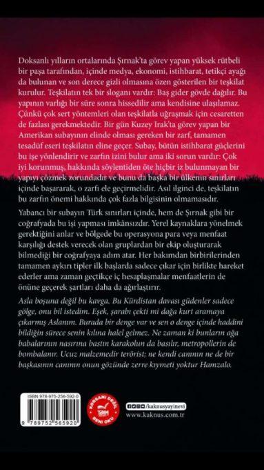 Yeni Kitap: Efraim, İbrahim Becer