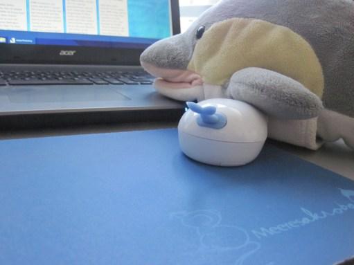 FINN bewegt die Delfin-Maus über das Maus-Pad. (Foto: Susanne Gugeler)