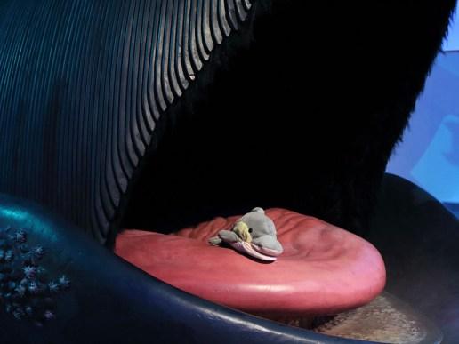 FINN im Maul eines Bartenwals (Foto: Rüdiger Hengl)