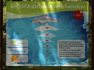 Informationstafel zum Vaquita (Foto: Rüdiger Hengl)