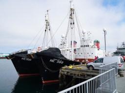 Walfangschiff in Island (Foto: Oliver Schmid)