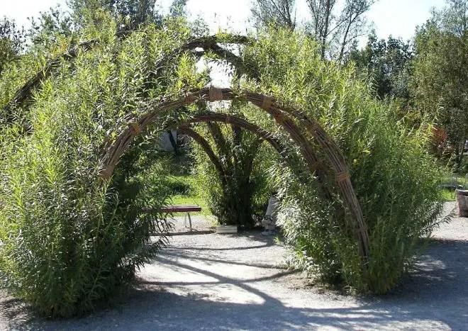 Naturnahe Gartengestaltung  Natrliche Grten anlegen und gestalten