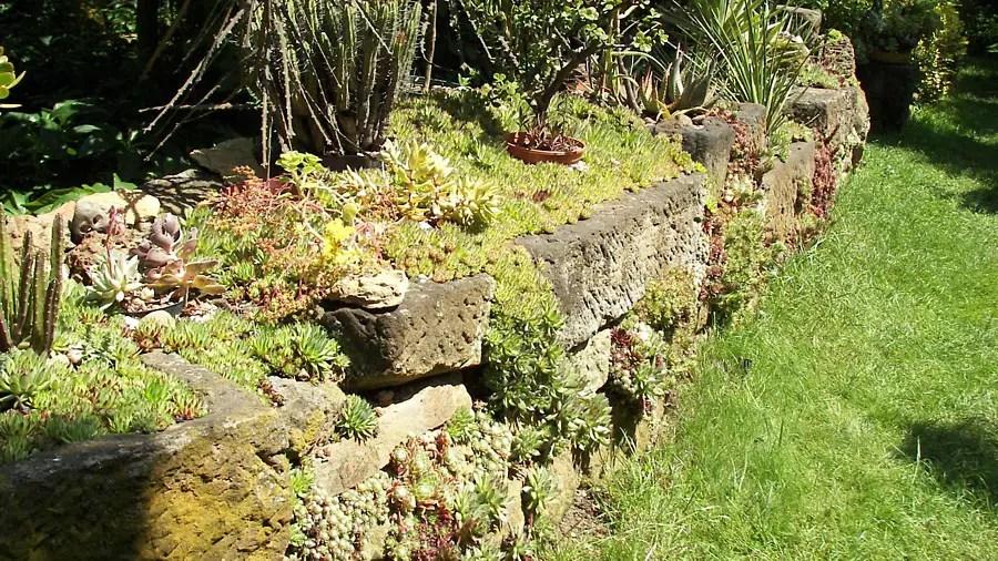 Steingarten anlegen und gestalten Natur und Architektur verbinden