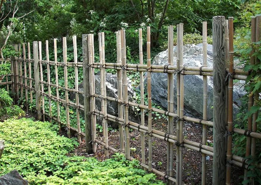 haus garten wohnen sichtschutz bambus sichtschutz sichtschutz aus bambus selber bauen bambusrohr und bambusmatten l gruener sichtschutz