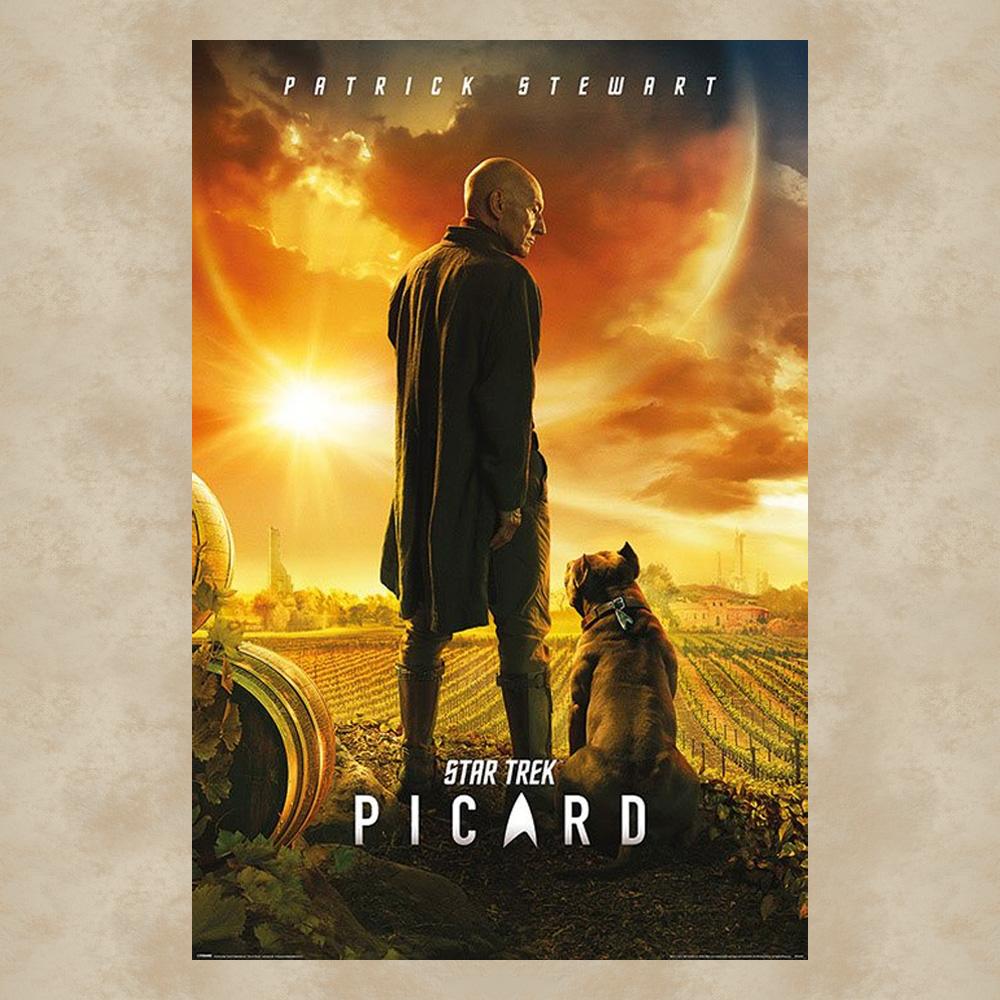 picard maxi poster star trek