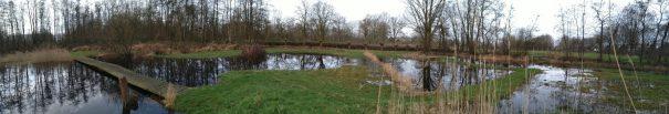 lage graslandjes onder water