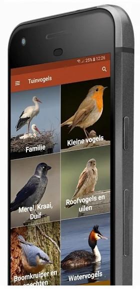 plaatje van vogelapp