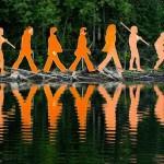 beeld evolutie mens