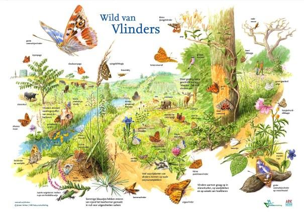 poster Wild van Vlinders
