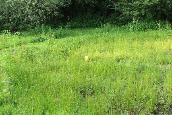 plakval midden in grasland