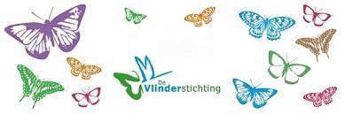 logo vlinderstichting