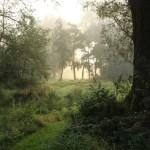 zonsopkomst boven noordelijke veldjes