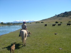 Après-midi à cheval chez Carol Jones Cabalgatas