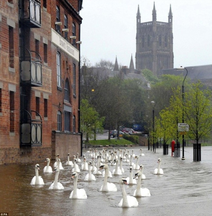 http://www.theguardian.com/uk/gallery/2012/may/01/flooding-across-southern-england-in-pictures#img-4
