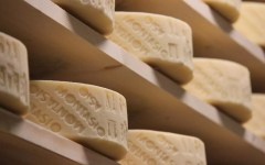 il formaggio Montasio DOP