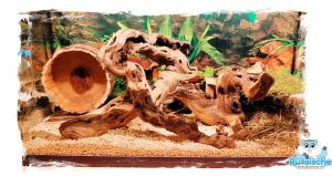 russische dwerghamster hamsterkooi