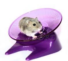 Flying Saucer looprad voor hamster