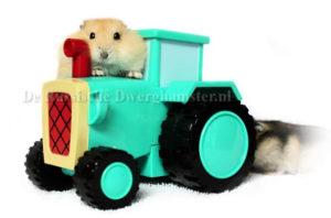 dwerghamste rin traker