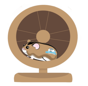 hamster in looprad