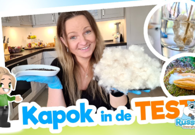 Kapok in de test