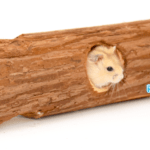 hamster en dwerghamster tunnels